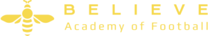 believe academy of football logo